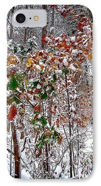 Fall And Winter IPhone Case
