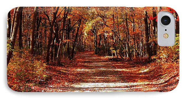 IPhone Case featuring the photograph Fall At Cheesequake by Raymond Salani III