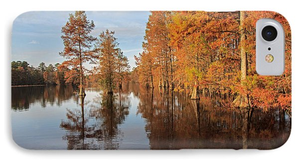 Fall At Trap Pond IPhone Case