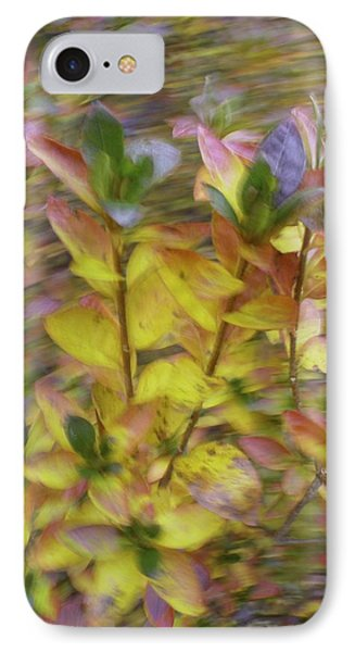 Autumn Azaleas 3 IPhone Case