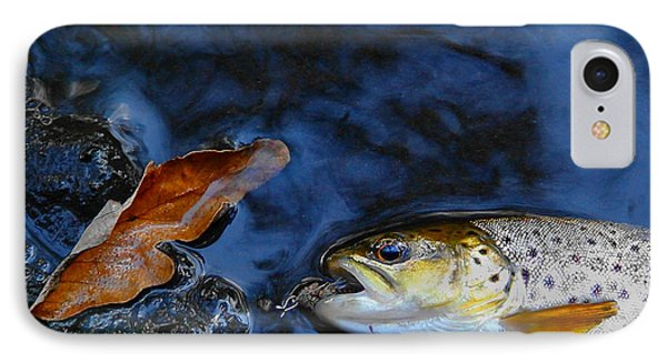 Fall Brown Trout Phone Case by Thomas Young