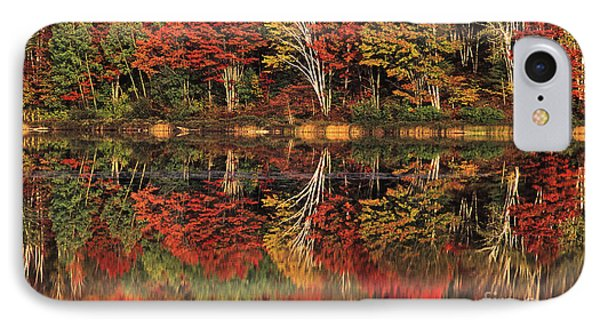 IPhone Case featuring the photograph Fall Color Reflected In Thornton Lake Michigan by Dave Welling