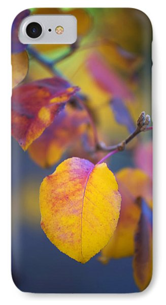 IPhone Case featuring the photograph Fall Color by Stephen Anderson