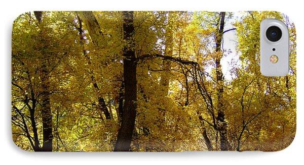 Fall Colors 6169 IPhone Case by En-Chuen Soo