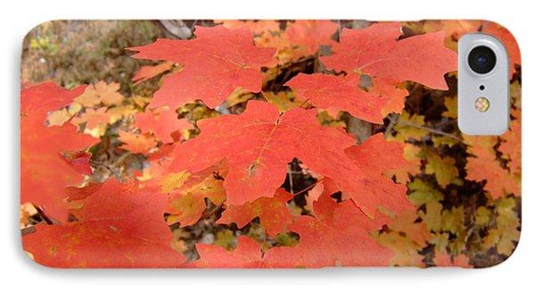 Fall Colors 6308 IPhone Case by En-Chuen Soo