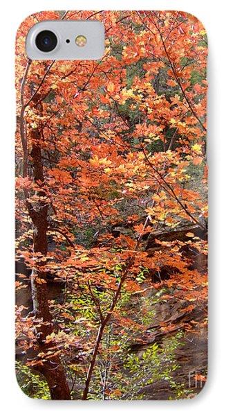 Fall Colors 6335 IPhone Case by En-Chuen Soo