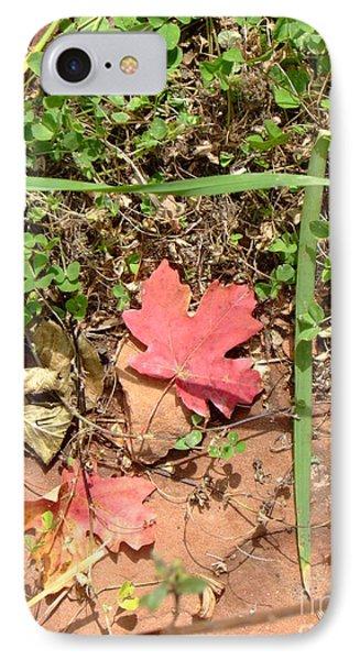 Fall Colors 6342 IPhone Case by En-Chuen Soo