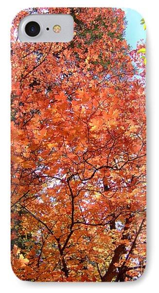 Fall Colors 6357 IPhone Case by En-Chuen Soo