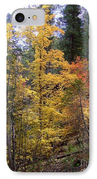 Fall Colors 6368 IPhone Case by En-Chuen Soo