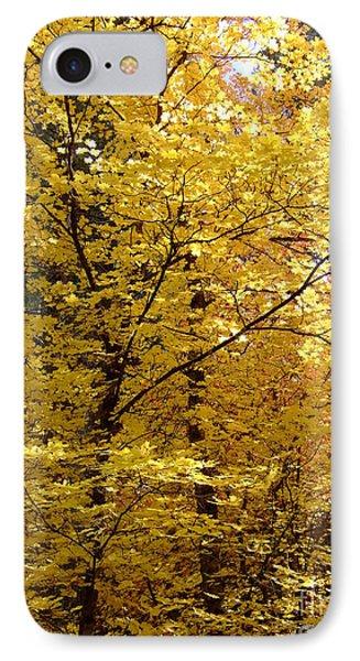 Fall Colors 6371 IPhone Case by En-Chuen Soo