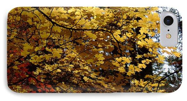 Fall Colors 6372 IPhone Case by En-Chuen Soo