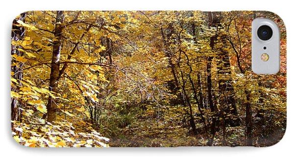 Fall Colors 6405 IPhone Case by En-Chuen Soo