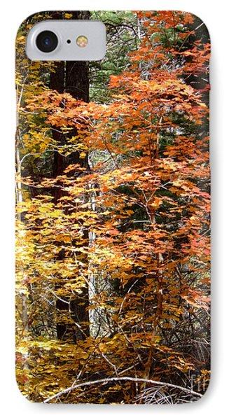 Fall Colors 6412 IPhone Case by En-Chuen Soo