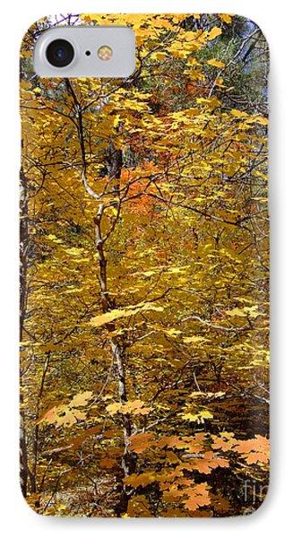 Fall Colors 6446 IPhone Case by En-Chuen Soo