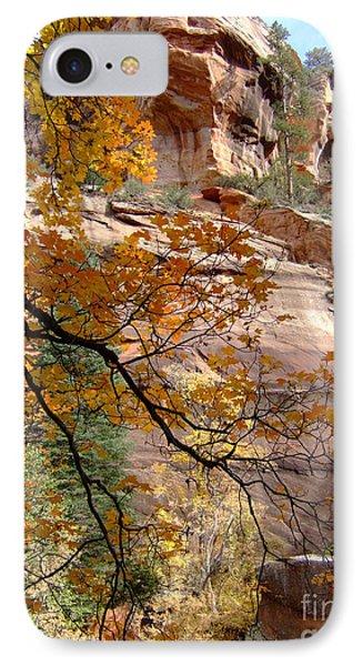 Fall Colors 6497 IPhone Case by En-Chuen Soo