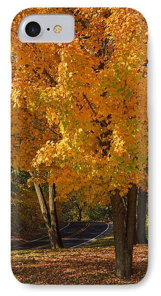 Fall Colors Phone Case by Adam Romanowicz