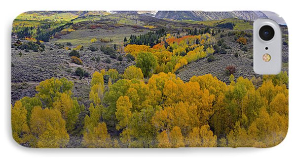 Fall Colors At Chair Mountain Colorado Phone Case by Tim Fitzharris