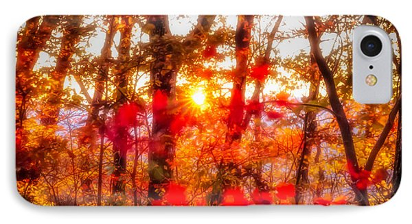 Fall Colors IPhone Case by David Cote