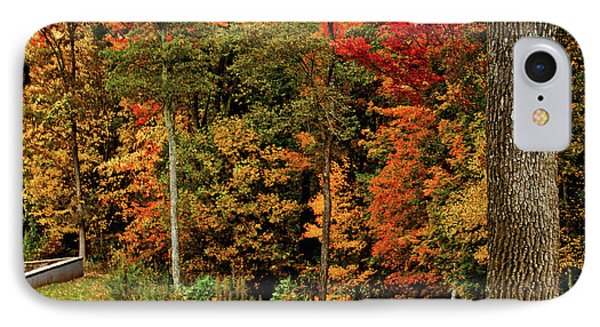 Fall Colors IPhone Case by Debra Crank