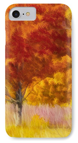 Fall Colors IPhone Case by Donald Schwartz