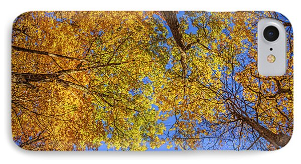 Fall Colors In The Sky  Phone Case by LeeAnn McLaneGoetz McLaneGoetzStudioLLCcom