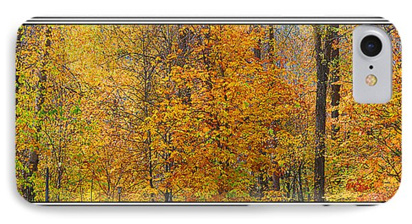 Fall Colors IPhone Case by John Bushnell