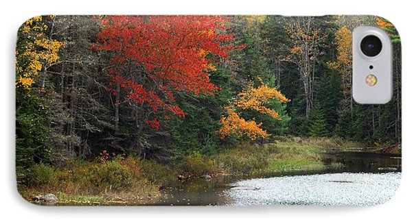 Fall Colors On A Lake IPhone Case