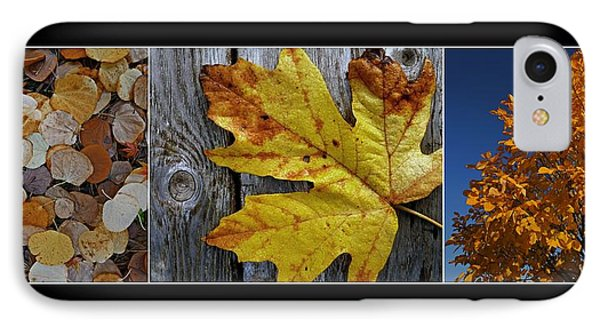Fall Colors Triptych IPhone Case by Patricia Strand