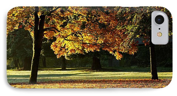 Fall Colours IPhone Case by Michele Wright