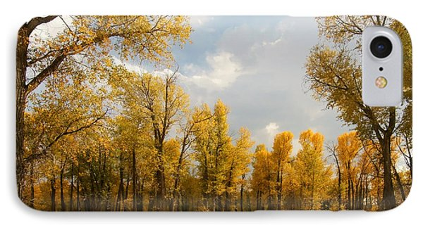 Fall Cottonwoods In Gros Ventre IPhone Case by Jeremy Farnsworth