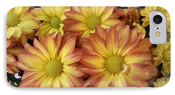 Fall Daisies IPhone Case by Donna Brown
