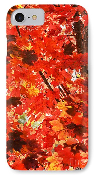 IPhone Case featuring the photograph Fall by David Perry Lawrence