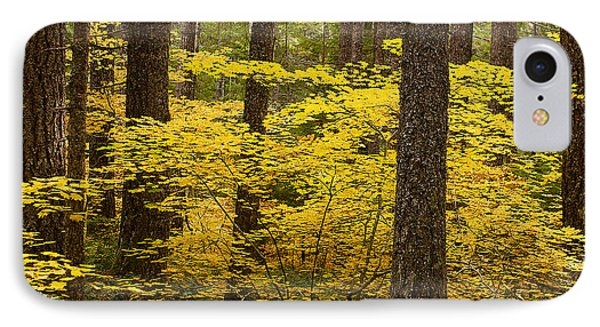 IPhone Case featuring the photograph Fall Foliage by Belinda Greb