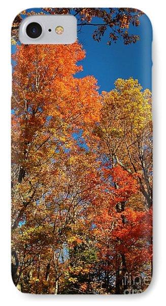 Fall Foliage Phone Case by Patrick Shupert