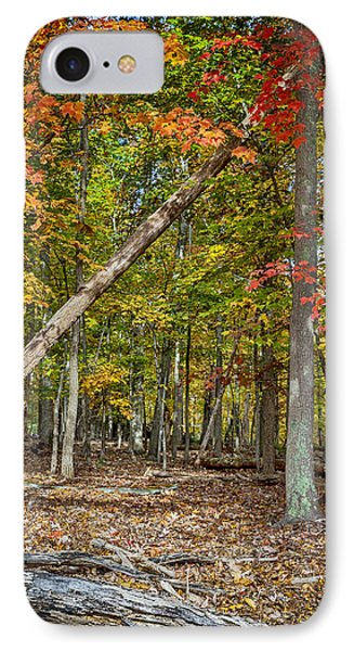 Fall Forest IPhone Case by David Cote
