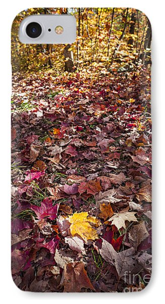 Fall Forest Floor  IPhone Case
