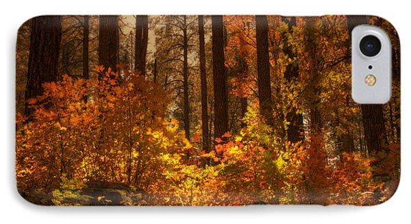 Fall Forest  Phone Case by Saija  Lehtonen