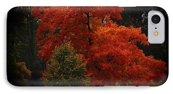IPhone Case featuring the digital art Fall Glory by Lena Wilhite