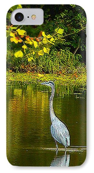 Fall Heron IPhone Case by Jeff Kurtz