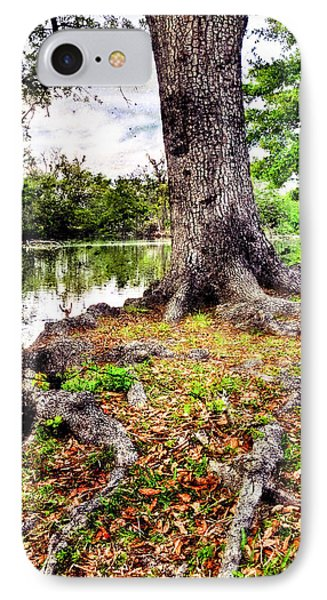Fall In Audubon Park Phone Case by Ray Devlin