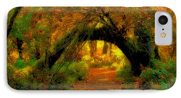 Fall In Olympia National Forest IPhone Case