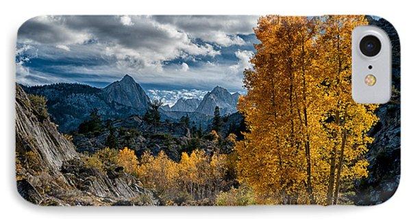 Fall In The Eastern Sierra IPhone Case