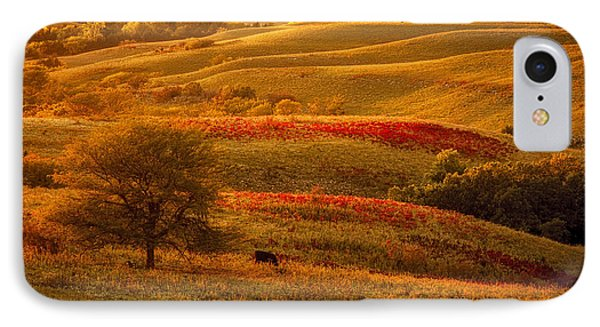 Fall In The Flint Hills IPhone Case by Scott Bean