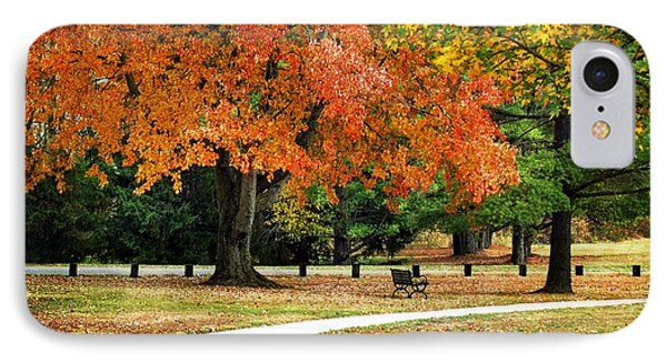 Fall In The Park Phone Case by Christina Rollo
