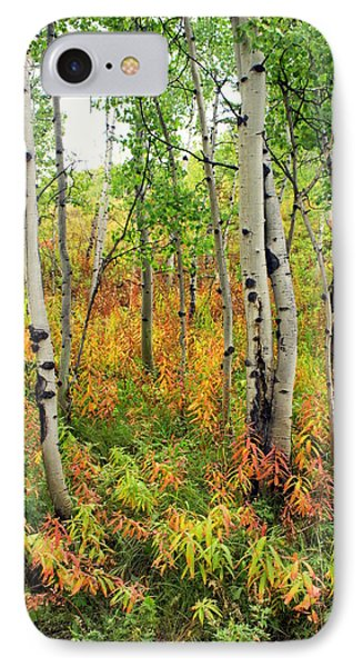 Fall In The Tetons Phone Case by Marty Koch