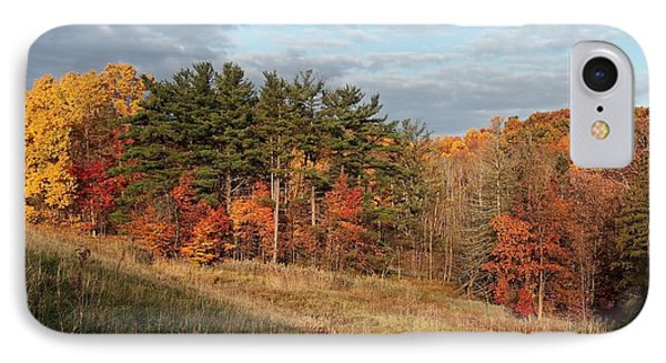 Fall In The Valley Phone Case by Daniel Behm
