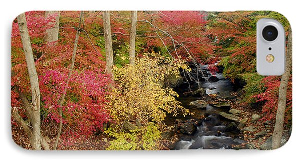Fall In Western Connecticut IPhone Case by Dan Myers