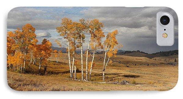 Fall In Yellowstone Phone Case by Daniel Behm