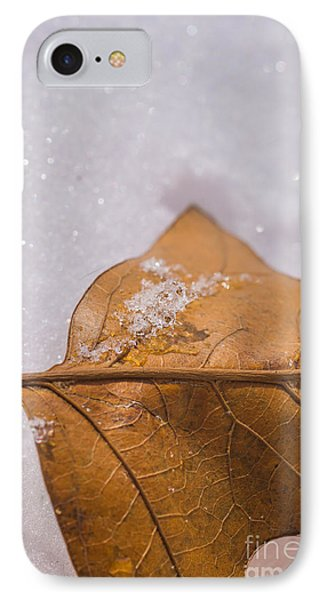 IPhone Case featuring the photograph Fall Into Winter Glitter by Julie Clements