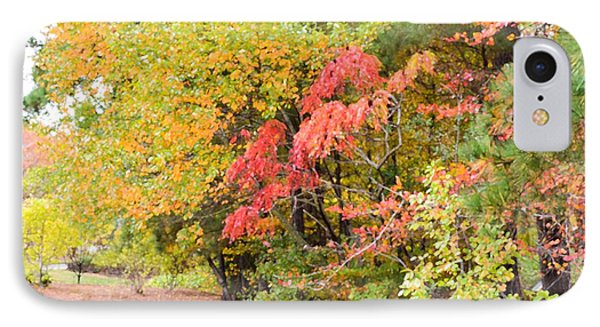 Fall Landscape 3 Phone Case by Lanjee Chee
